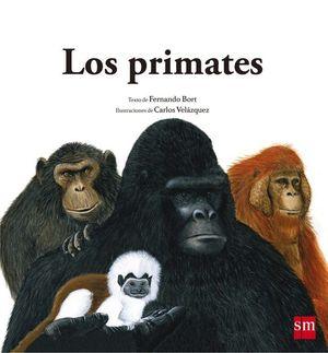 LOS PRIMATES. A PARTIR DE 4 AÑOS